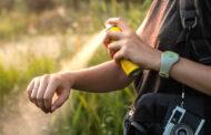پیشگیری از گزیدگی حشرات در کیش