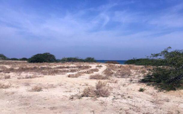 خاک شناسی جزیره کیش