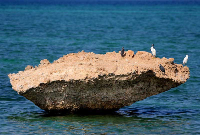 پیدایش جزیره کیش