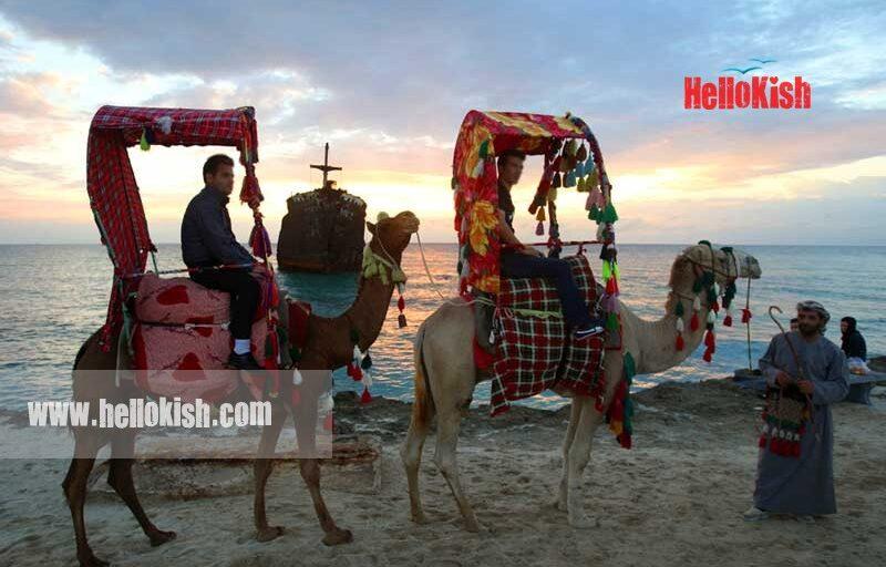 اسب سواری و شتر سواری در کیش